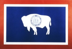 wyoming buffalo flag (500 x 341)