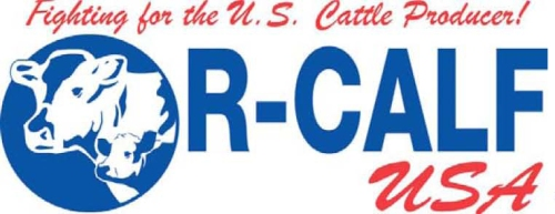 R-Calf_letterhead1