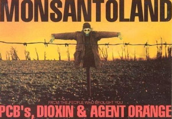 monsanto gmo s The millions against monsanto campaign was started by oca in the mid 1990s to fight back against monsanto and the other biotech bullies responsible for poisoning the world's food and.