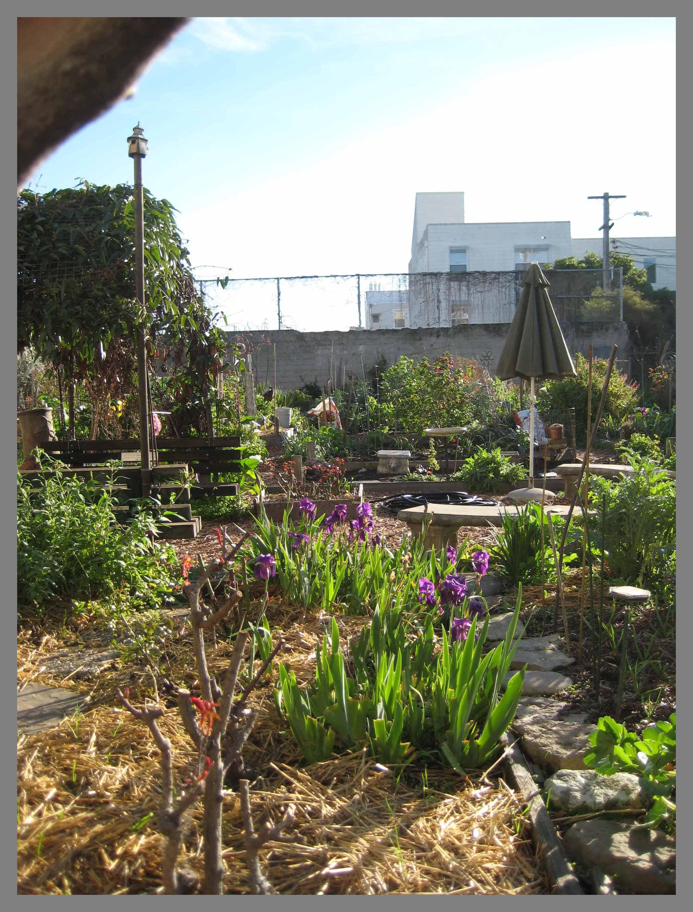 Beau Dearborn Garden SF