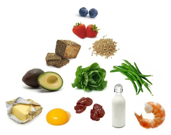 Food Pyramid Guidelines. the best food pyramid