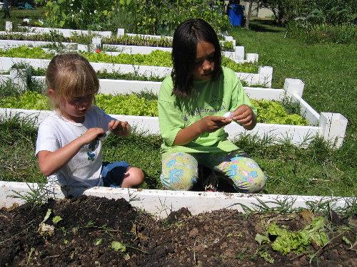 Secret to raising food smart kids a school garden that s also a