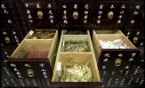 Criminalizing Nature: Dark Times for Herbal Medicine in Europe