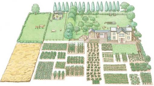 1 Acre Farm Layout