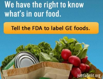 Why We Oppose GMO Labeling: Science and the Law   The Huffington Post