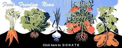 FFN donate 380